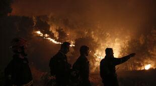 Pożary lasów na Eubei (PAP/EPA/KOSTAS TSIRONIS)